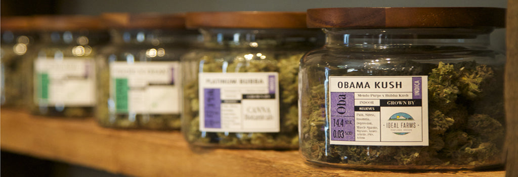 medical-marijuana-dispensary-what-is-marijuana-shake