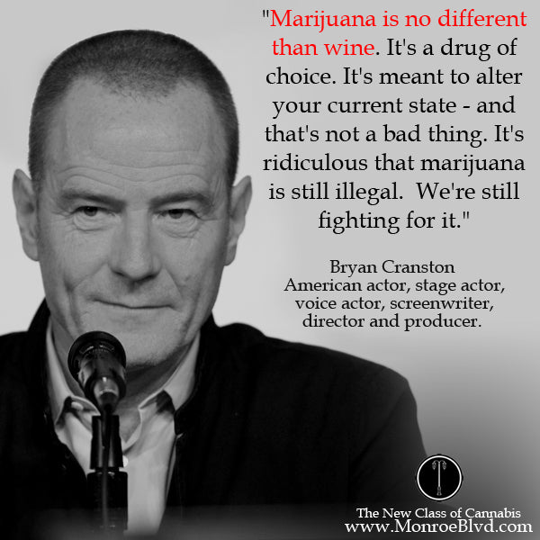 famous-stoner-quotes-about-life-marijuana-quotes-cannabis-quotes-bryan-cranston