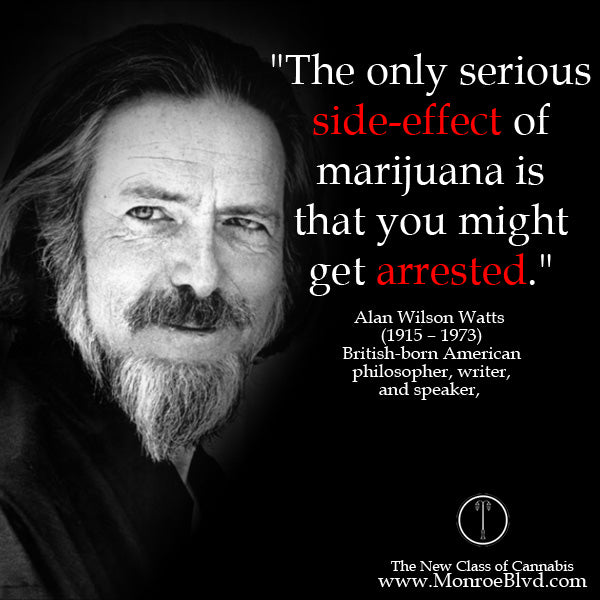 famous-stoner-quotes-about-life-marijuana-quotes-cannabis-quotes-alan-watts