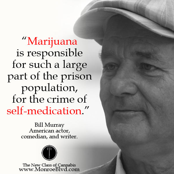 famous-stoner-quotes-about-life-marijuana-quotes-cannabis-quotes-bill-murray