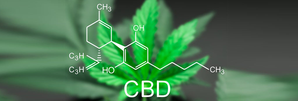 treating-epileptic-seizures-with-cbd-oil