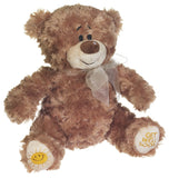 "Little William Bear 8""- 50978"