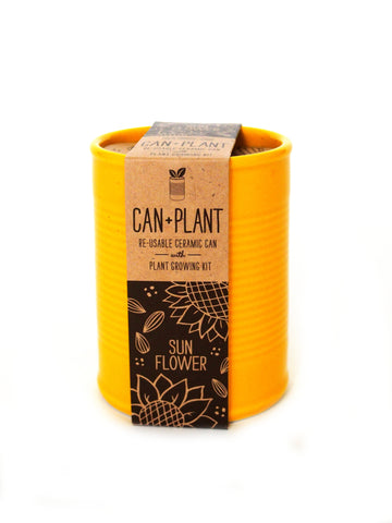 Can+Plant Sonnenblume | Noted*
