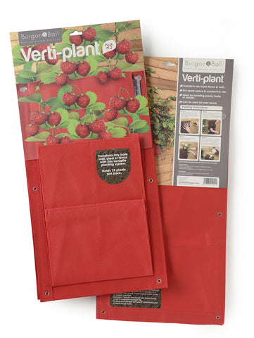 Verti Plant Strawberry | Burgon & Ball