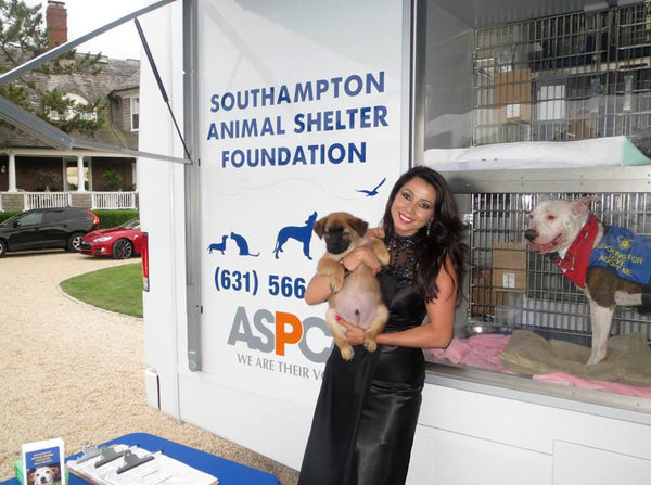 Rachel Grant at Southampton Animal Shelter Foundation Benefit