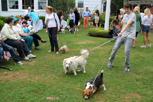 Yappy Hour shelter benefit