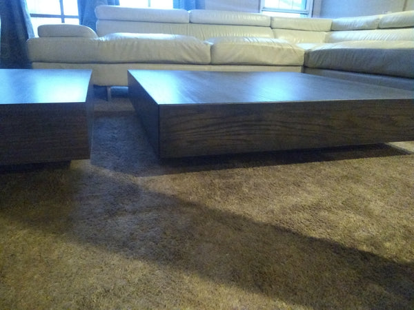 Sleek modern Coffee Table 2