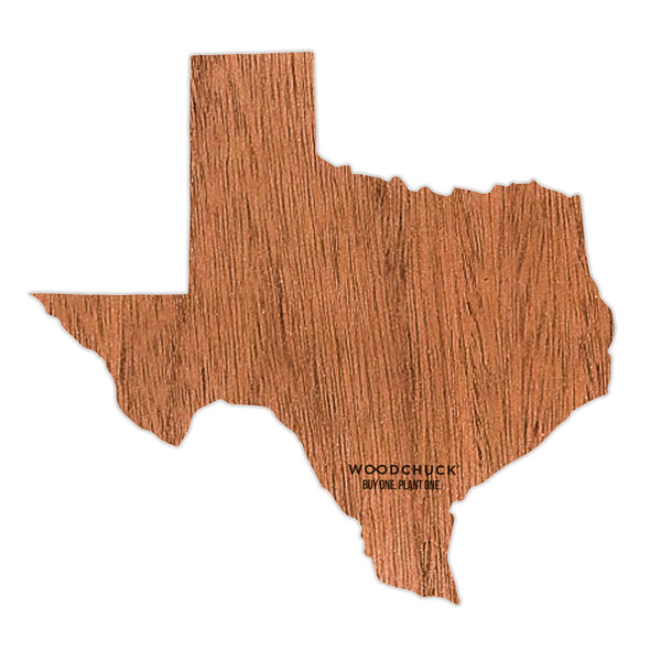Texas Wooden Sticker