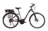 Raleigh Motus Low Step Grey