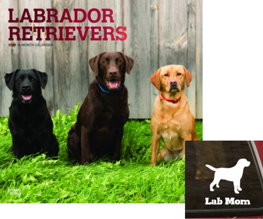 Lab Lovers 2019 Calendar/Decal Set