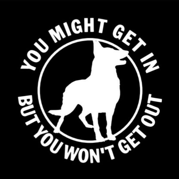 You Might Get In German Shepherd Vinyl Car Window Sticker