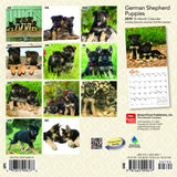German Shepherd Puppies 2019 Mini Wall Calendar