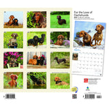 For The Love Of Dachshunds 2019 Deluxe Wall Calendar
