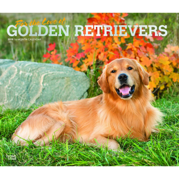 For The Love Of Golden Retrievers 2019 Deluxe Wall Calendar
