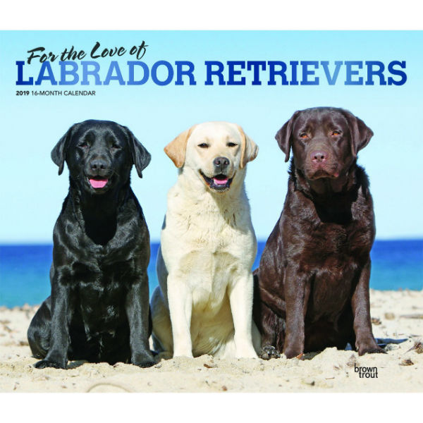 For The Love Of Labrador Retrievers 2019 Deluxe Wall Calendar