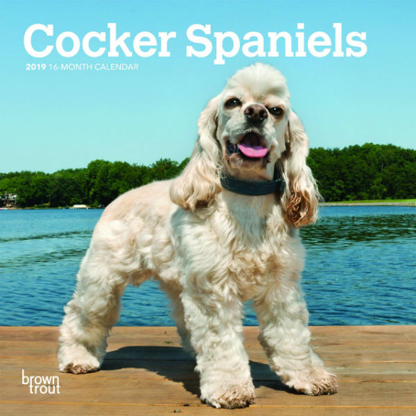 Cocker Spaniels 2019 Mini Wall Calendar