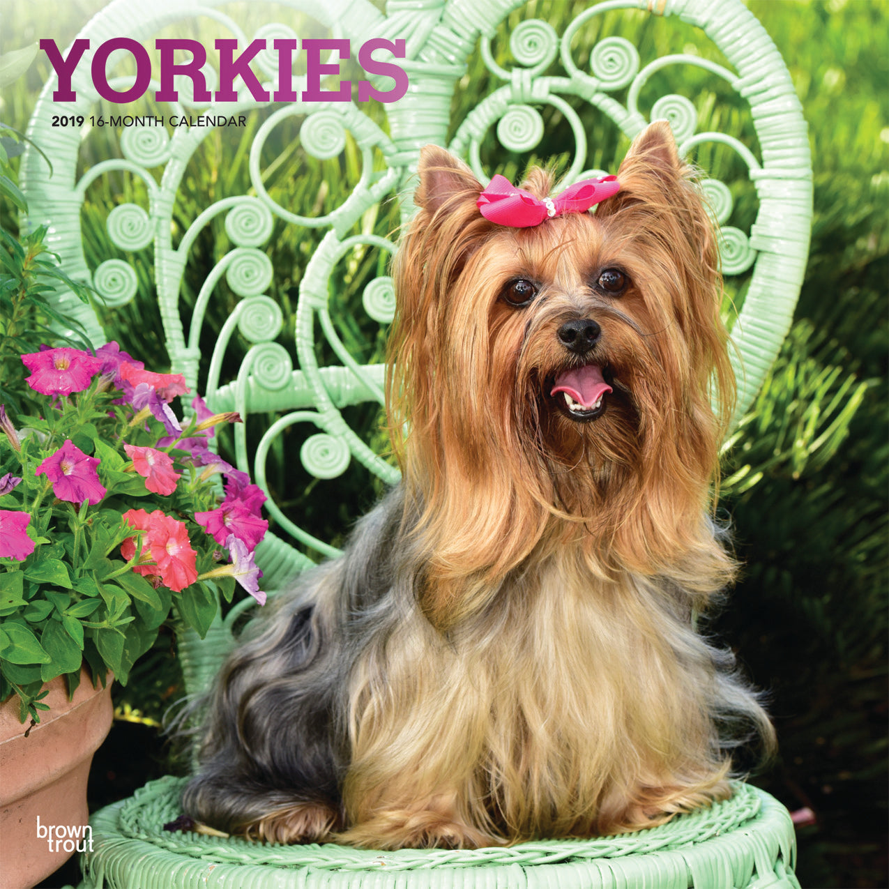 Yorkshire Terriers 2019 Wall Calendar