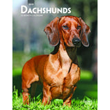 Dachshunds 2019 Weekly Planner