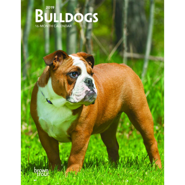 Bulldogs 2019 Weekly Planner