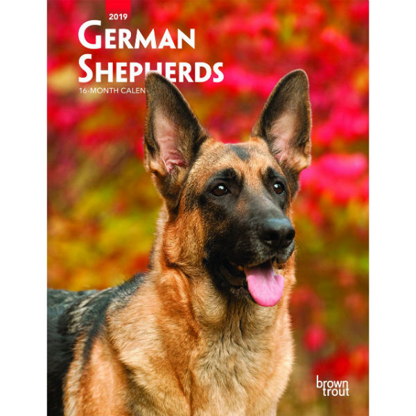 German Shepherds 2019 Weekly Planner