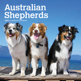 Australian Shepherds 2020 Mini Wall Calendar