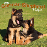 German Shepherd Puppies 2020 Wall Calendar