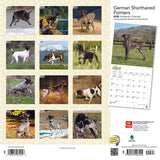 German Shorthaired Pointers 2020 Wall Calendar