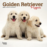Golden Retriever Puppies 2020 Mini Wall Calendar