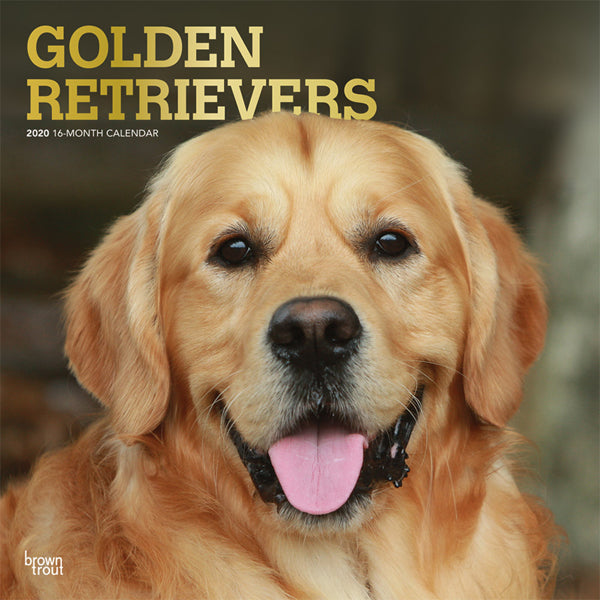 Golden Retrievers 2020 Wall Calendar (PRE-ORDER)