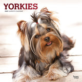 Yorkshire Terriers 2020 Wall Calendar