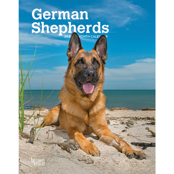 German Shepherds 2020 Weekly Planner