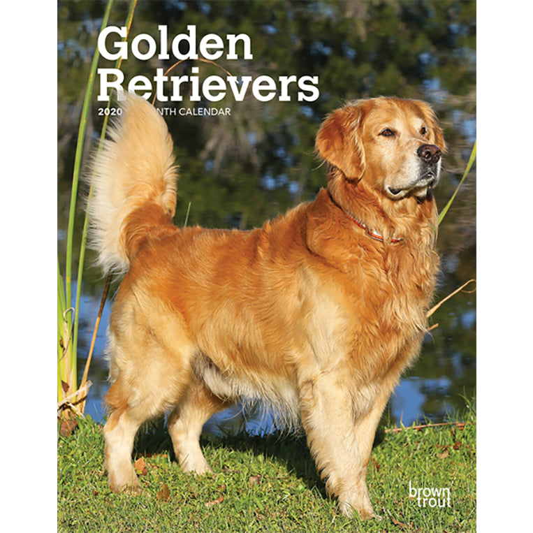 Golden Retrievers 2020 Weekly Planner