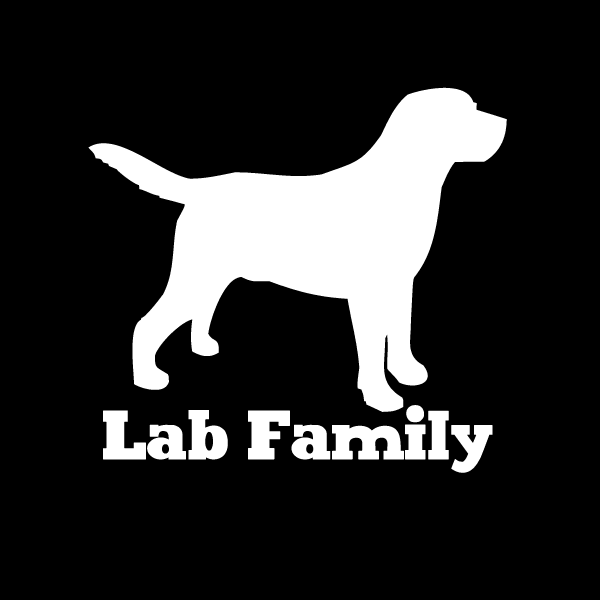 Lab Family Vinyl Car Window Decal