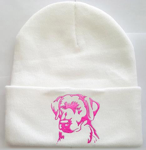 Lab Knit Ski Hat
