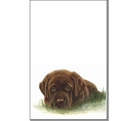 Max The Chocolate Lab Notepad