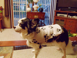 Fleece Dog Coat Small