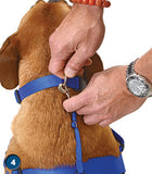 WaggWalker Dog Harness