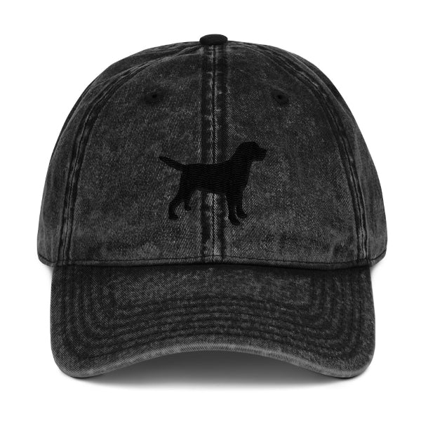 Lab Silhouette Hat