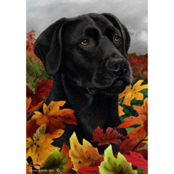 Tamara Burnett Fall Leaves Labrador Retriever Flag