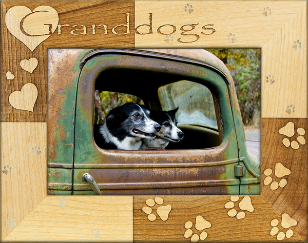 Granddogs Picture Frame Feeds A Shelter Dog For 5 13