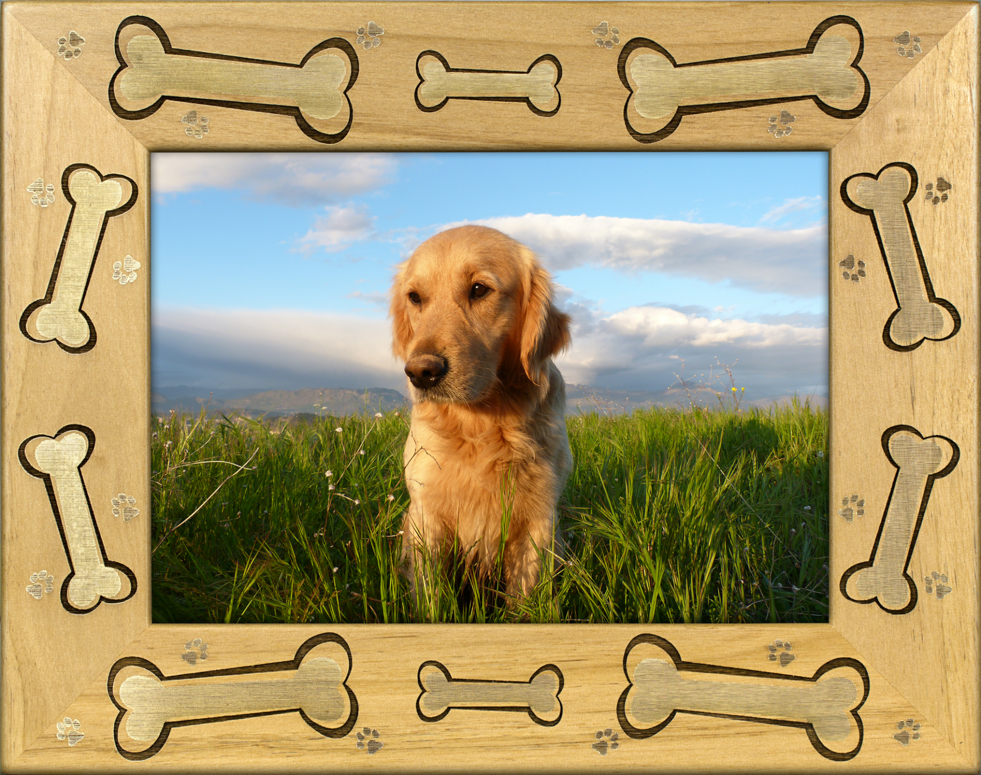 Dog Bones Alderwood Picture Frame