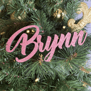 Personalized No Mess Glitter Name Ornaments
