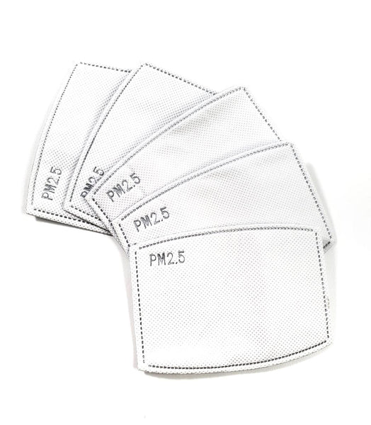 PM2.5 Filter (10 Pack)