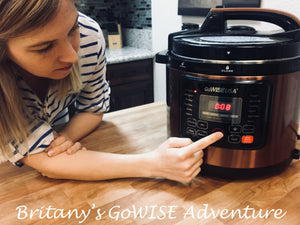 Britany's GoWISE Adventure: Week 2