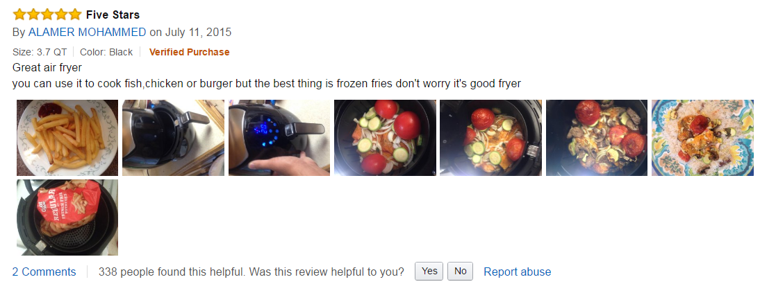air fryer review gowise