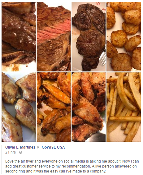 Customer review Gowise air fryer