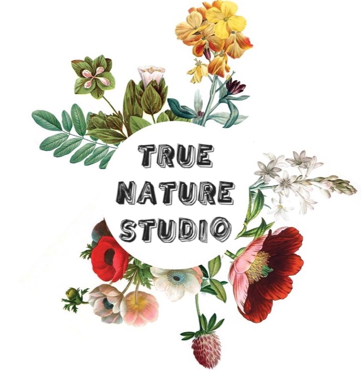 TRUE NATURE STUDIO