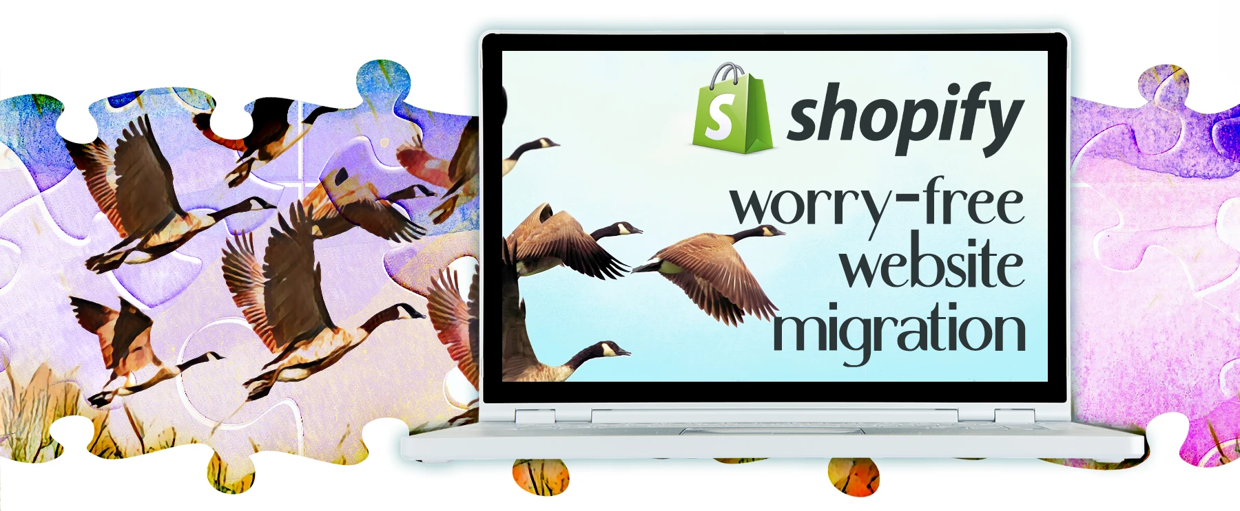 Worry Free Website Migrations to Shopify by 2FriendsDesigns