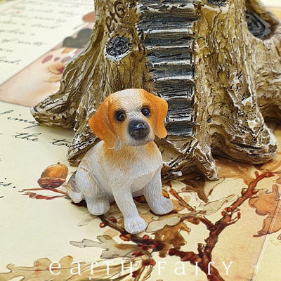 Beagle - Sitting | Fairy Gardens - Australia | Earth Fairy