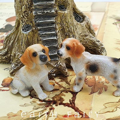 Beagle - Set of 2 | Fairy Gardens - Australia | Earth Fairy